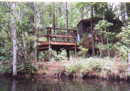 Manatee Hammock Campground Rates Majestic Trees Picture